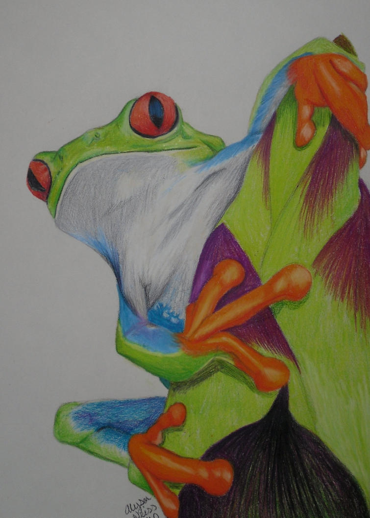 Red Eyed Tree Frog by Jazzy23