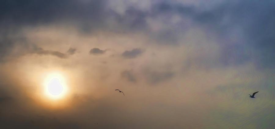 sun dance by windv
