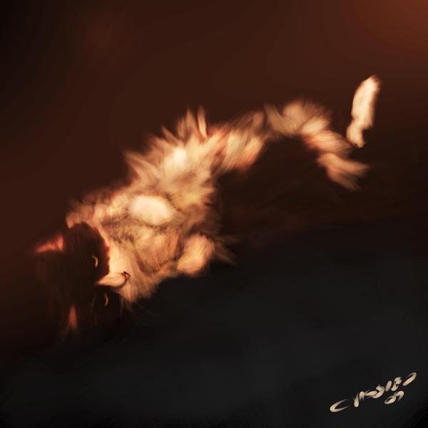 Zorro by Immunox