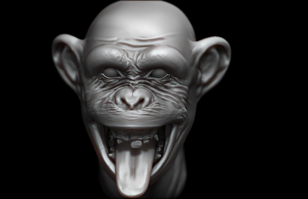 Monkey by OgzKyn