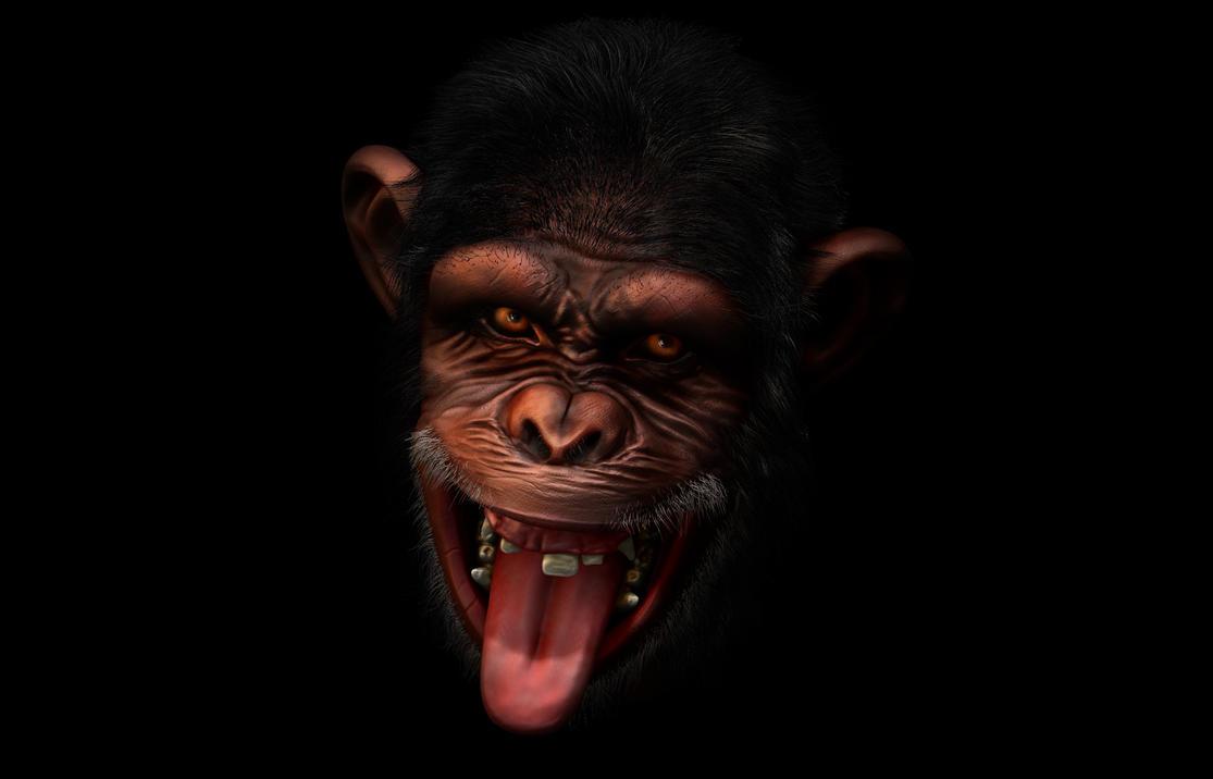 Monkey Final by OgzKyn