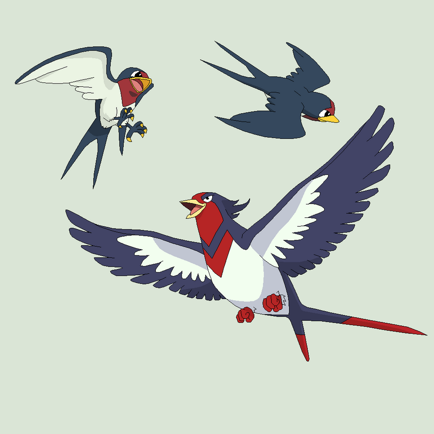 Pokemon Base 33~Taillow Evolution~ by Xbox-DS-Gameboy on DeviantArt   894 x 894 png 147kB