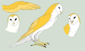 Owl Ref Base