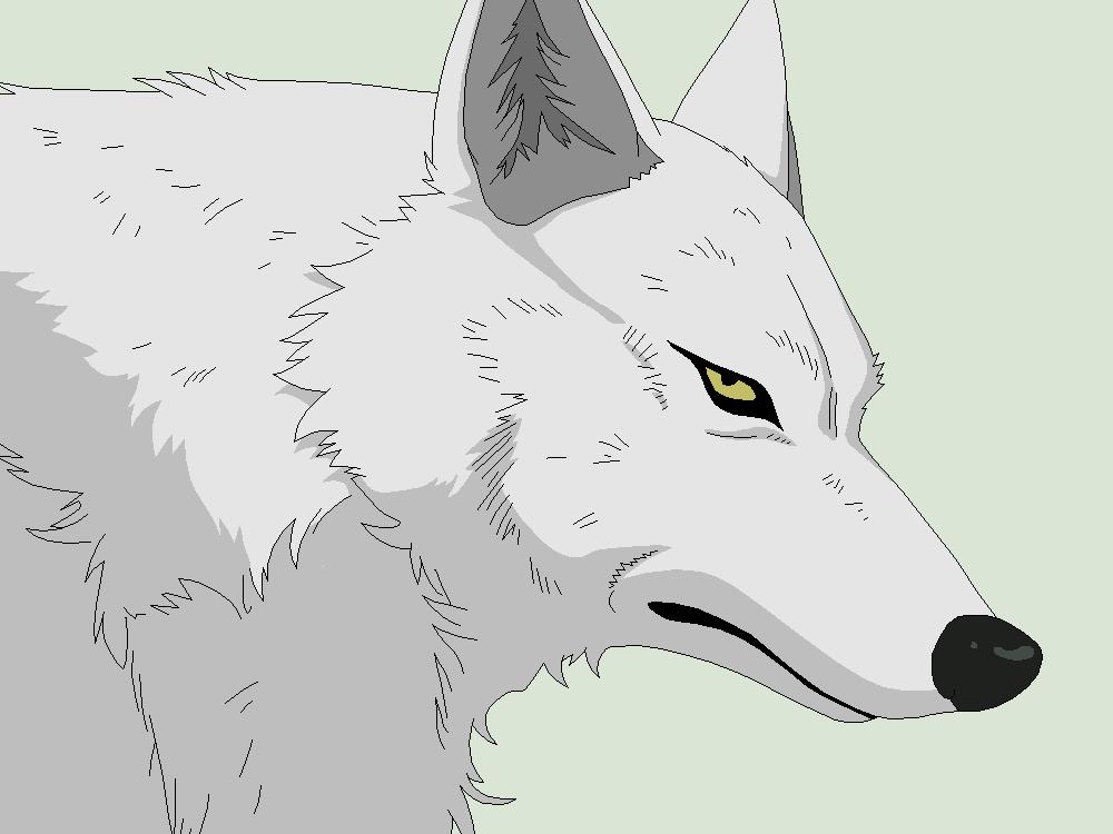 Wolf Lineart : Wolf s rain base kiba by xbox ds gameboy on deviantart