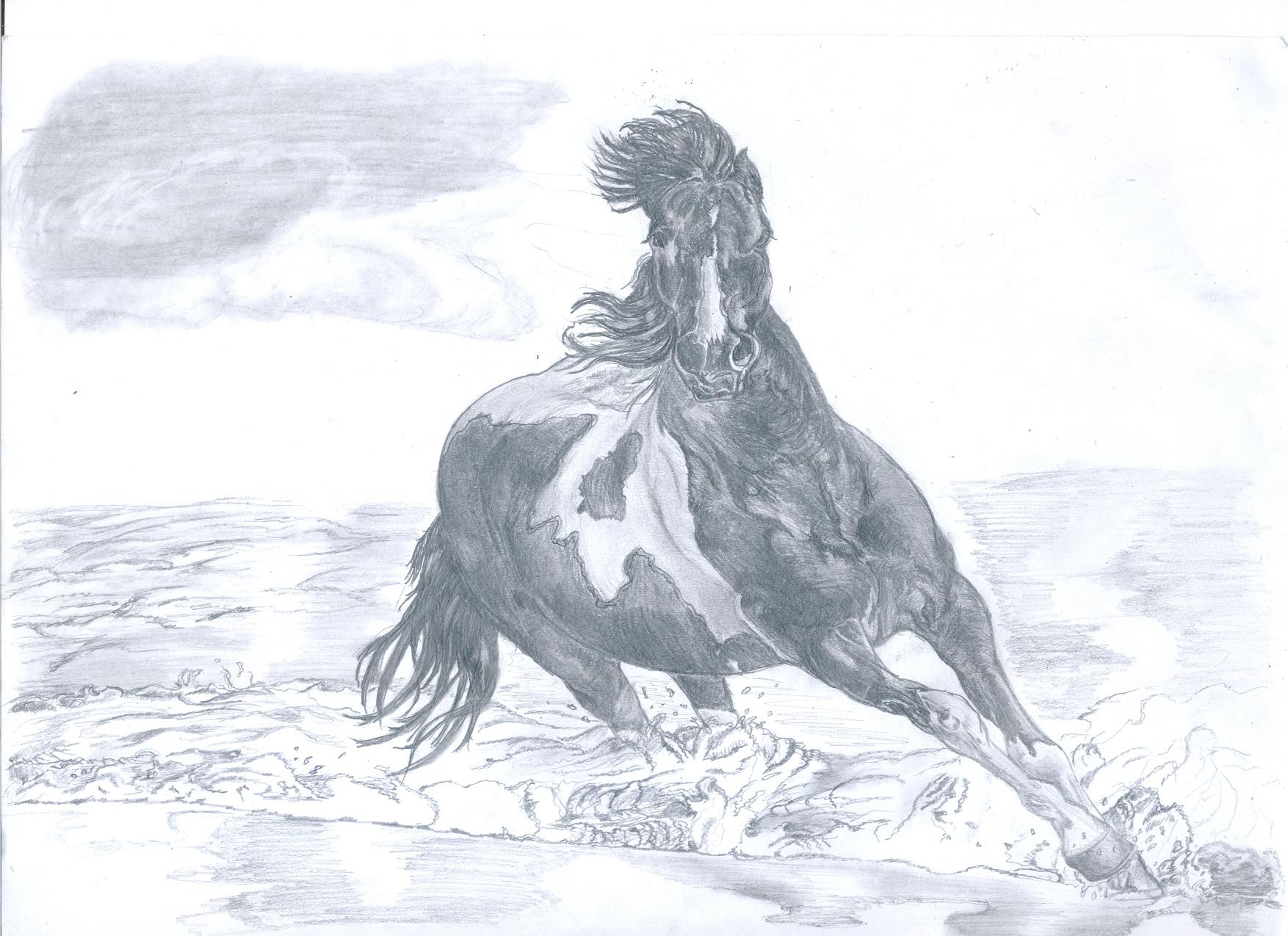 running horse by ivandesign-zecow on DeviantArt