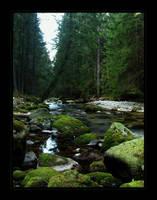 highland stream by jeni-cek