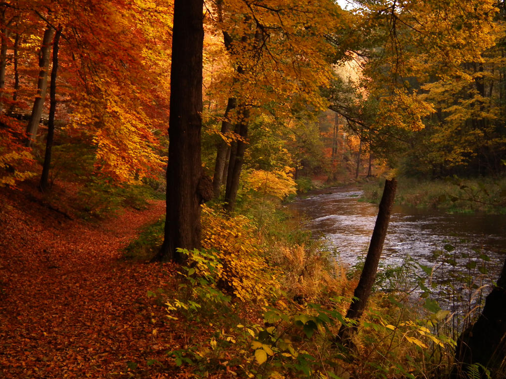 Herbstidyll by GapVarGinnunga