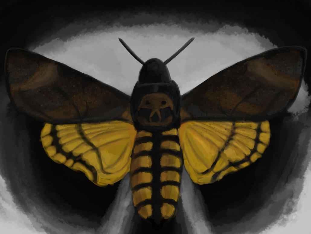 Jame's hawkmoth by AgentBurn