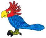 Gang Gang Cockatoo