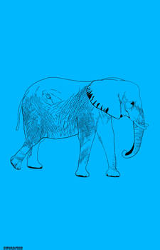Elephants are Big
