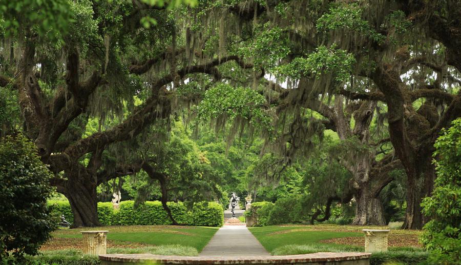 Brookgreen Gardens By Silicon640c On Deviantart