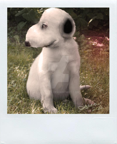 real life snoopy by leticce on deviantart