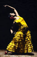 UnMomento Intenso del Flamenco by ryoung