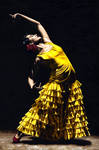 UnMomento Intenso del Flamenco
