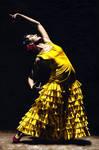 UnMomento Intenso del Flamenco