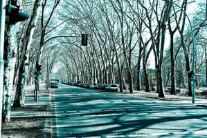Old street...