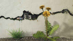 Between the Cracks by curious3d