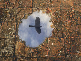 Puddle2 by curious3d