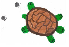 turtle the trutle by emmersallday