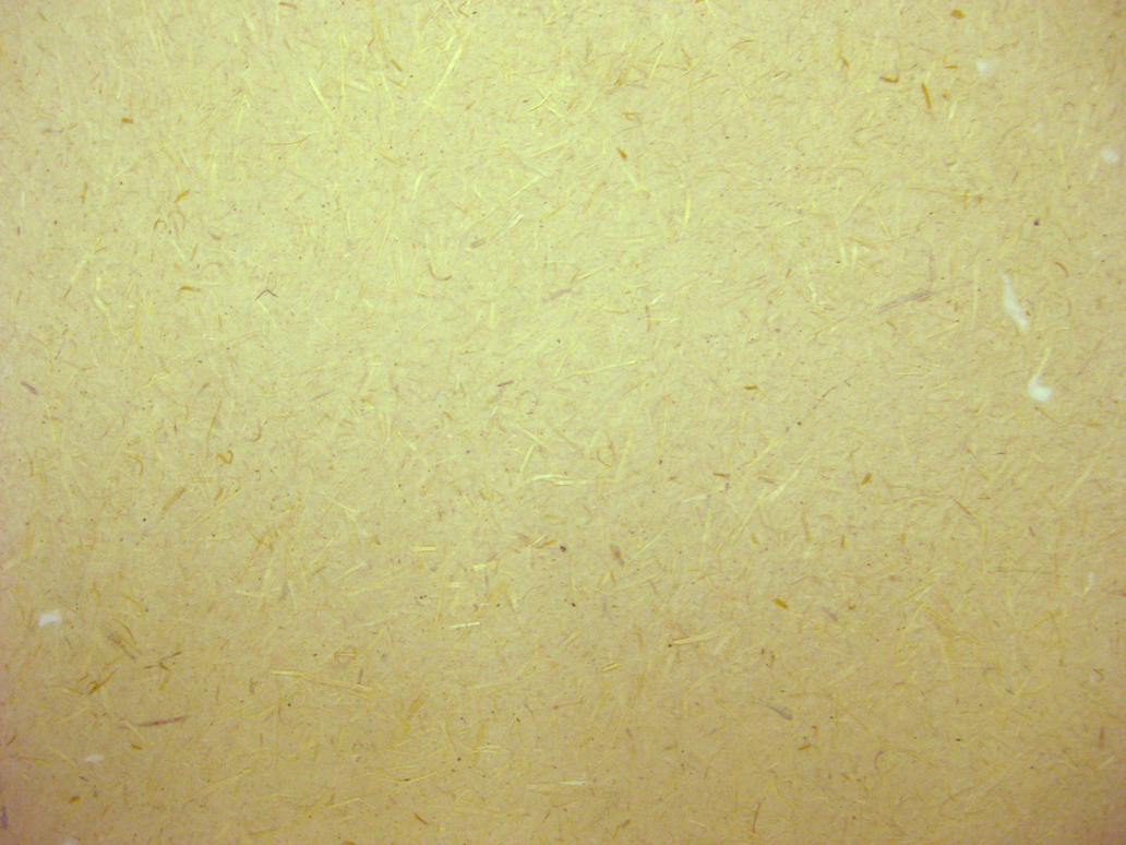 Home Made Paper Texture 2 by ScooterboyEx221 on deviantART