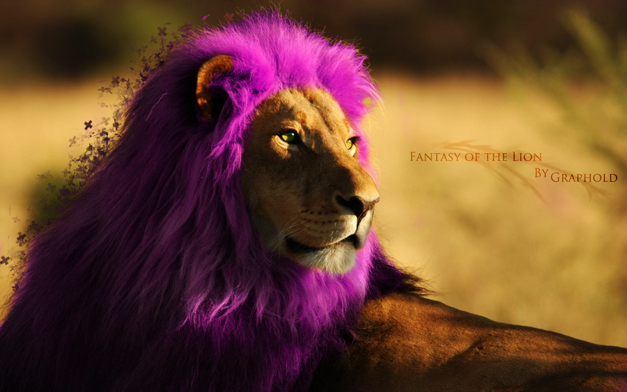 Fantasy lion - photo#23