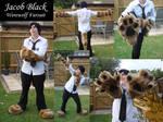 Jacob Black Fursuit WIP
