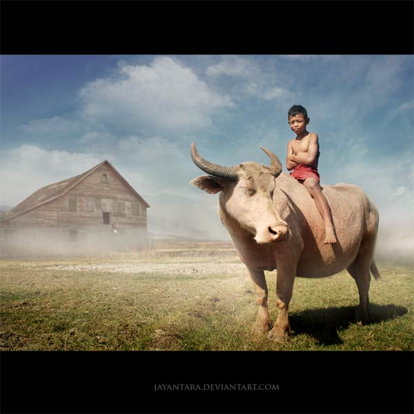 Buffalo Soldier by Jayantara