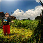 Big Dani at him Rice Field