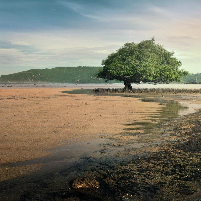 Pantai Putri Mandalika by Jayantara