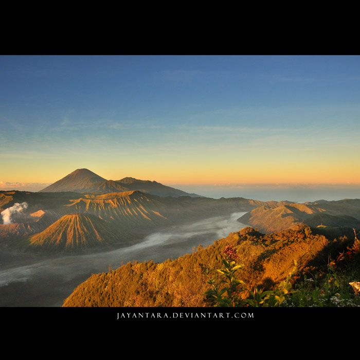 Liver of Bromo by Jayantara