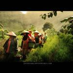 ceu juju by Jayantara