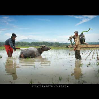 hayu atuh by Jayantara
