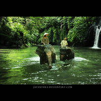 Little Jumbo by Jayantara