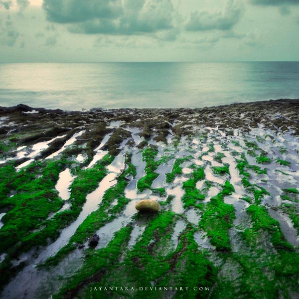 -040411- by Jayantara