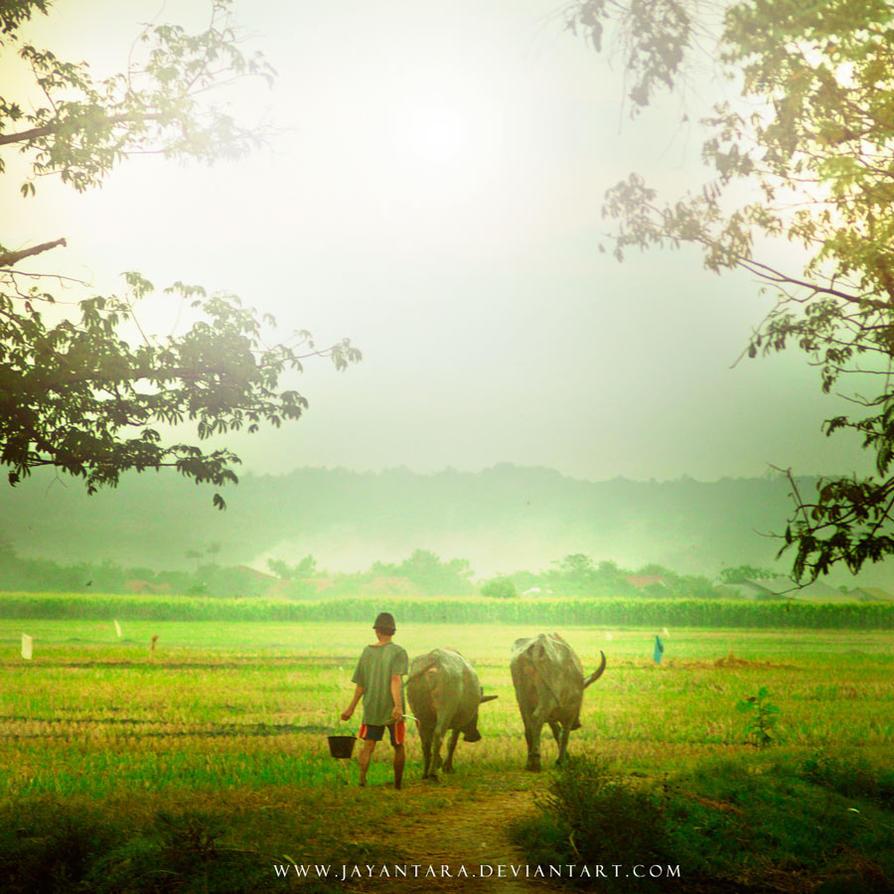 Dsc0727 by Jayantara