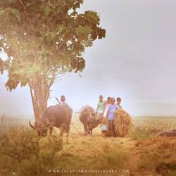 Dsc0710 by Jayantara