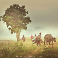 Dsc0716 by Jayantara