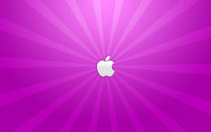 A Purple Apple by yc