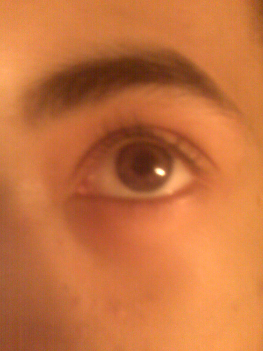 NEW CONTACTS by Aric414