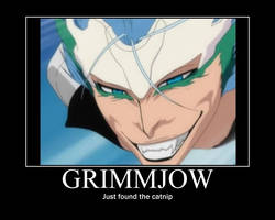 Bleach Grimmjow Motivational by daddius