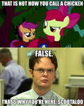 Scootaloo and Dwight Schrute