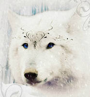 Ice Wolf by Sherubichan