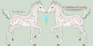 6241 CaribbeanCandy Foal Design Holder by HoT-Stables
