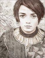 Arya Stark by An7Dash