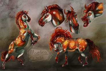 Maedea Character Sheet by Amadoodles