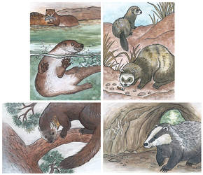 Tradingcards: Mustelidae Elements by seYca