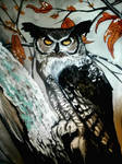 Old Owl by govthescoffer