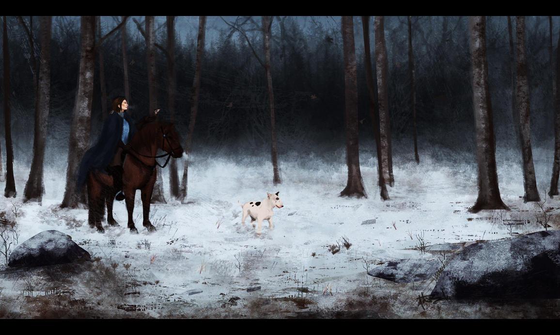 Lady Knight by cowboifunk