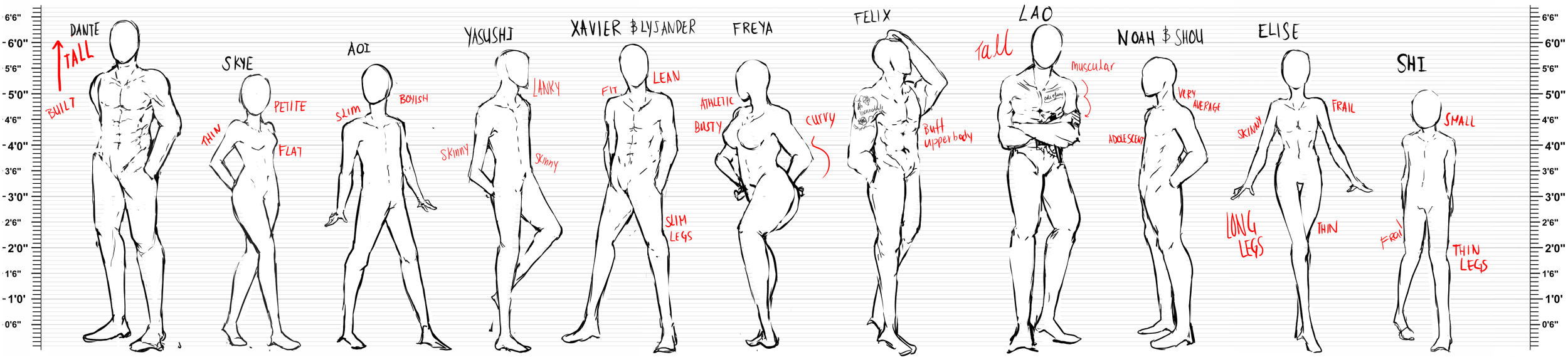 Body Type And Height Reference By Calvariae On Deviantart