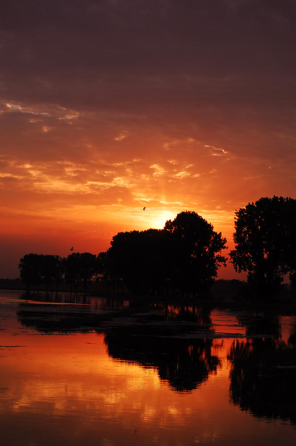 Sunset 4 by sageata
